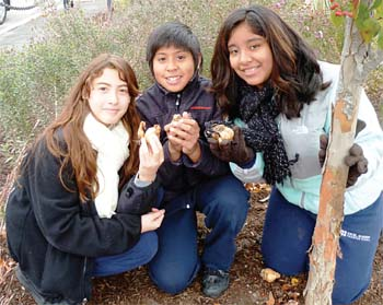 Excel Academy Students Take Part in Boston Blooms